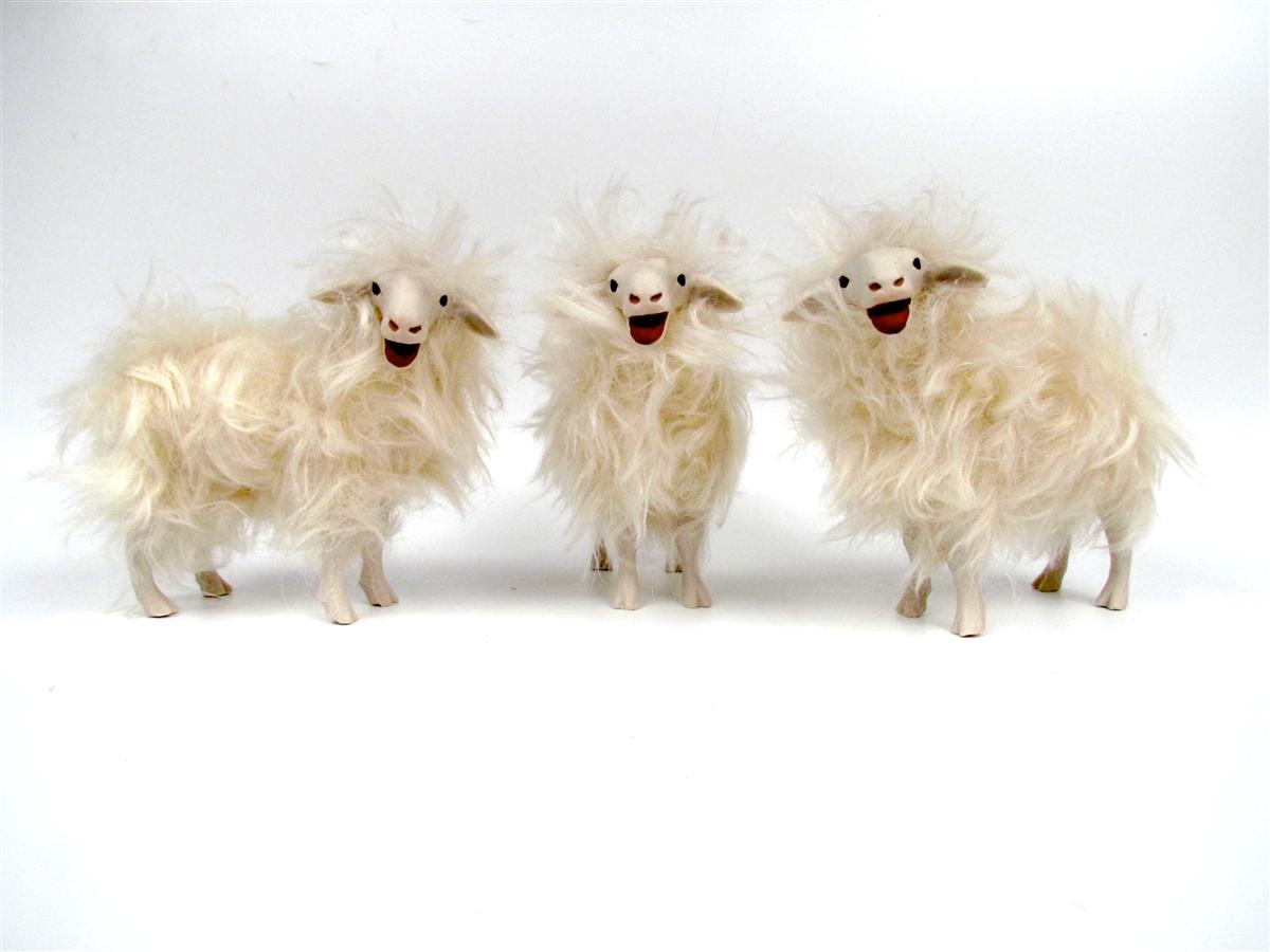 Sarda Baaing Sheep