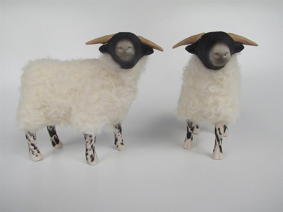 scottish blackface ewe and lamb 2