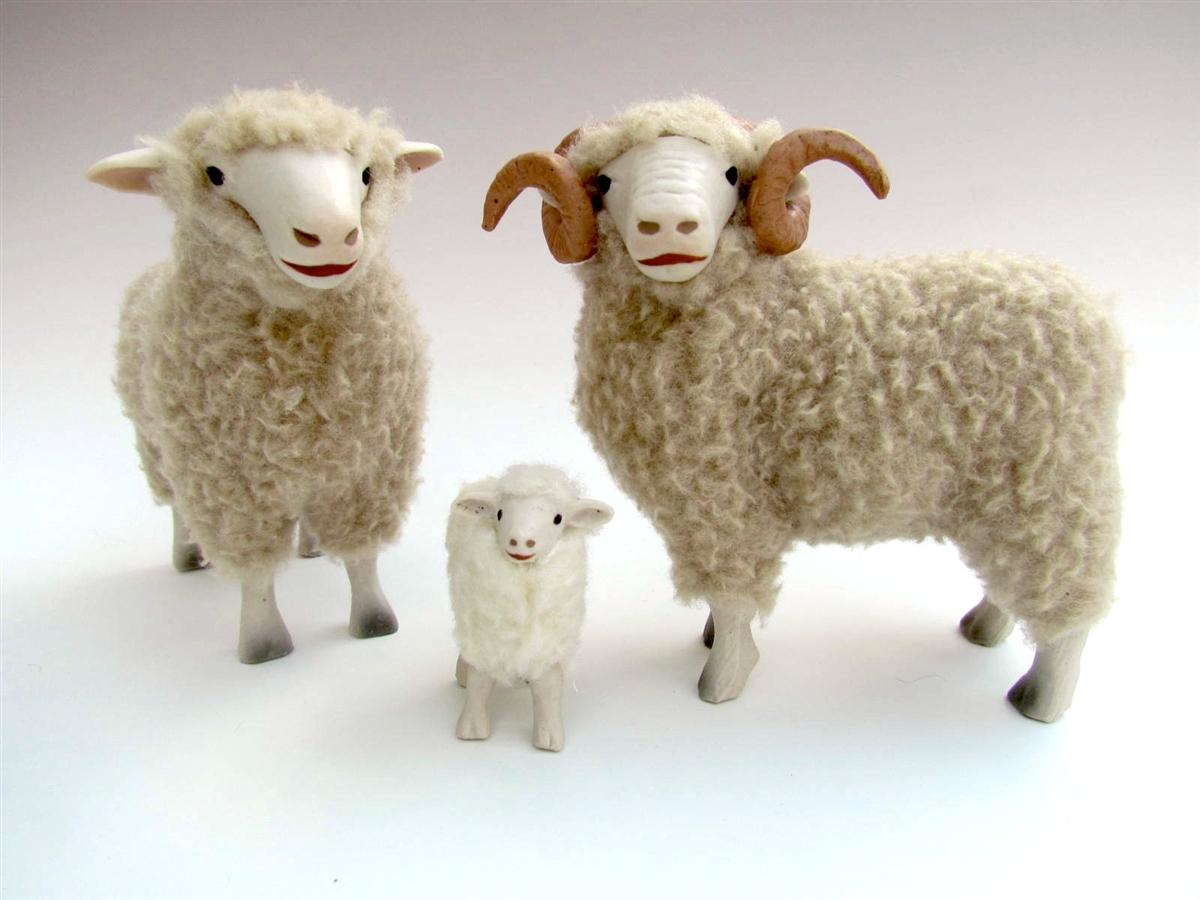 Dorset Family