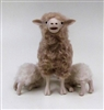 Colin's Creatures Handmade Porcelain Sheep Figurines, Merino Family