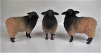 Colin's Creatures Handmade German Pommersches Sheep Figures