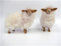 Colin's Creatures Christmas Sheep, Latxa Flock