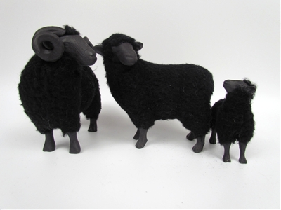 Black Sheep Family with Tall Lamb