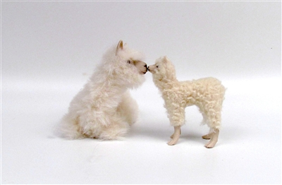 Alpaca Coosh with Cria