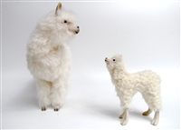 Alpaca Standing with Cria