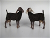 Nubian Brown Goats w/udders