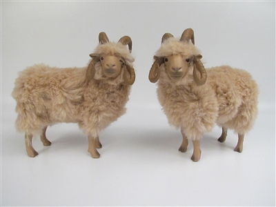 Colin's Creatures Life Like Sheep Figurines, Navajo Rams