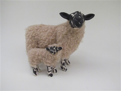 Beulah Speckled Face Ewe Turned With Lamb