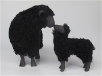 Black Sheep Ewe Kissing Large Lamb