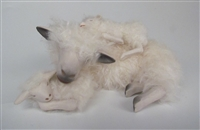 Colin's Creatures Handmade porcelain sheep figurines, Sleeping Cotswold Ewe Sleeping Sandwich