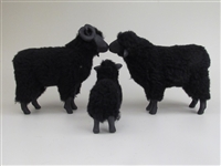 Black Sheep Family Kissing