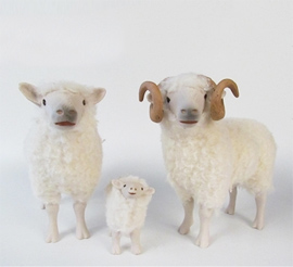 SHEEP FAMILIES